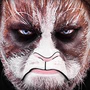 Grumpy Cat Cosplay Schminkanleitung